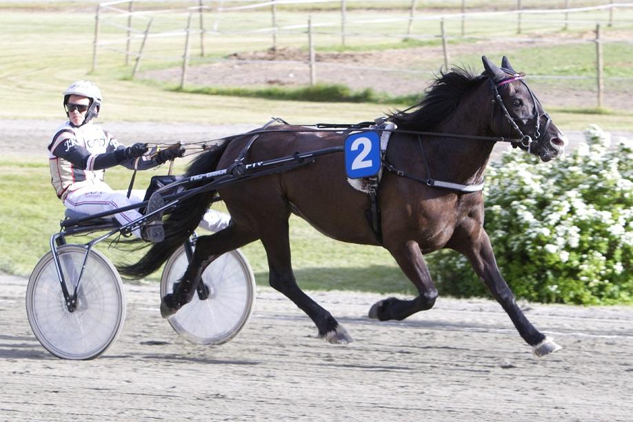 Johan Kringeland Eriksen styrte inn Linni M. til seier på Klosterskogen torsdag kveld. Foto: Hesteguiden.com.