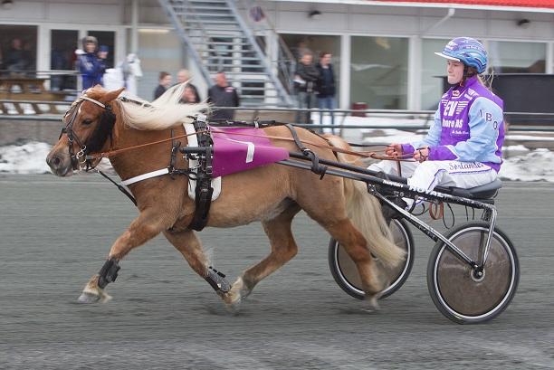June Leire, her sammen med Smedens Betty Boop, har kvalifisert seg til finalen i TGN-serien. Foto: Hesteguiden.com.