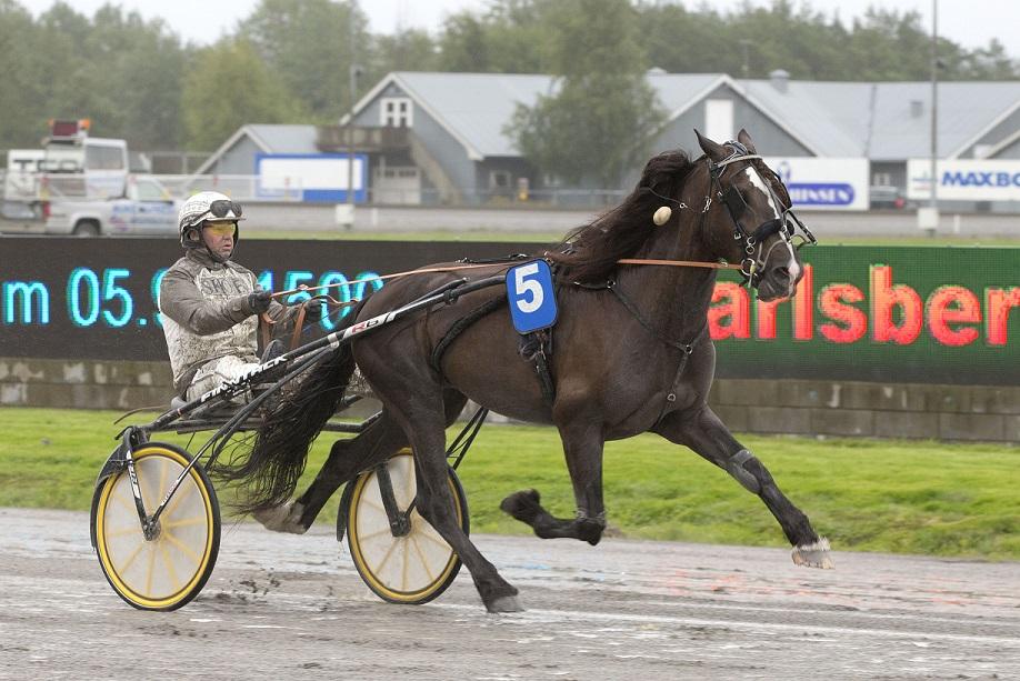 Eirik Høitomt og Holene Odin har en nydelig oppgave i V65-innledningen i Travparken søndag. Foto: Hesteguiden.com.