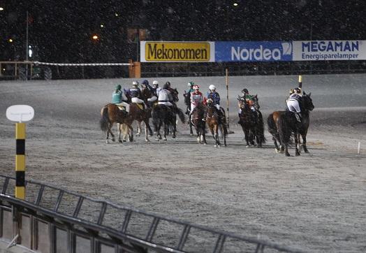 Lørdag 19.november blir det voltekurs på Sørlandets Travpark. Foto: Hesteguiden.com.