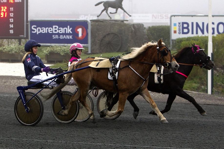 Lørdag 3.desember er det fellestrening for ponnier på Sørlandets Travpark. Foto: Hesteguiden.com.