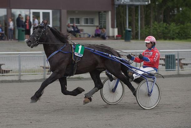 Grimstad-hesten Haugstad Losen får nok en gang Åsbjørn Tengsareid som makker i sulkyen. Foto: Hesteguiden.com.