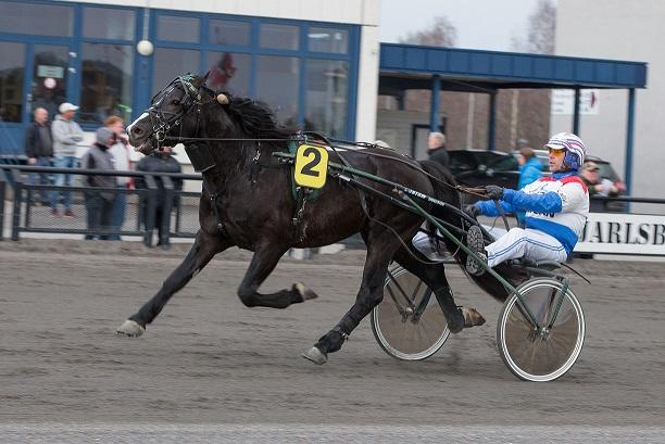Jenny Thygesens Tangen Trym jakter søndag sin fjerde strake seier. Foto: Hesteguiden.com.