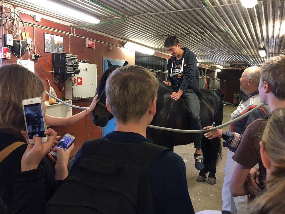 Etter hvert våget flere og flere av elevene seg opp på ryggen til Tøffe Tøft. Foto: Richard Ekhaugen.