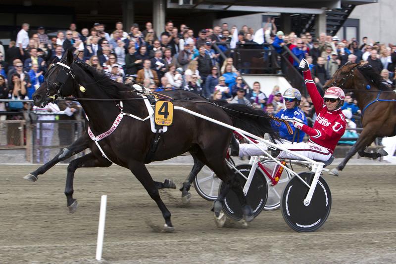 B.B.S. Sugarlight vinner Oslo Grand Prix i 2015. Foto: Hesteguiden.com.
