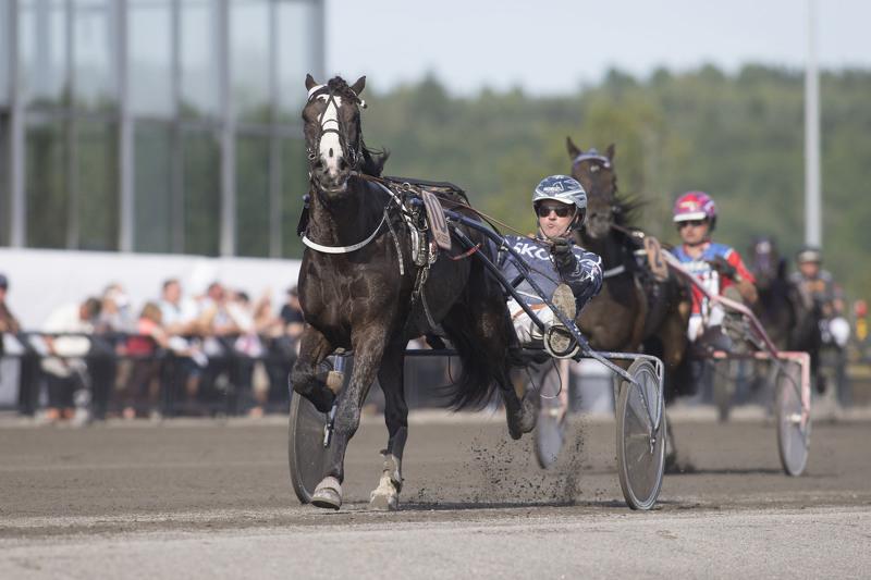Philip Rex vinner i overlegen stil på Jarlsberg i juli 2014. Søndag gjør Lillesand-hesten comeback etter nesten ett år på sidelinjen. Foto: Hesteguiden.com.