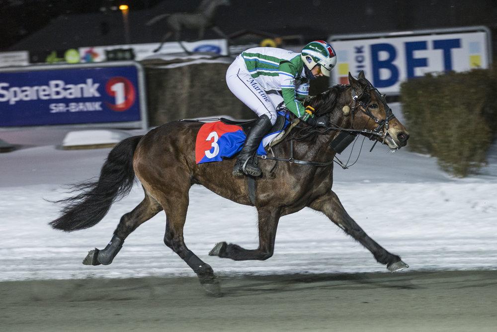 Kent Lauritsens Arnspik, her med Martine Finsand på ryggen, ligger svært godt an i kampen om en finaleplass i Sørlandsmesterskapet. Foto: Hesteguiden.com.