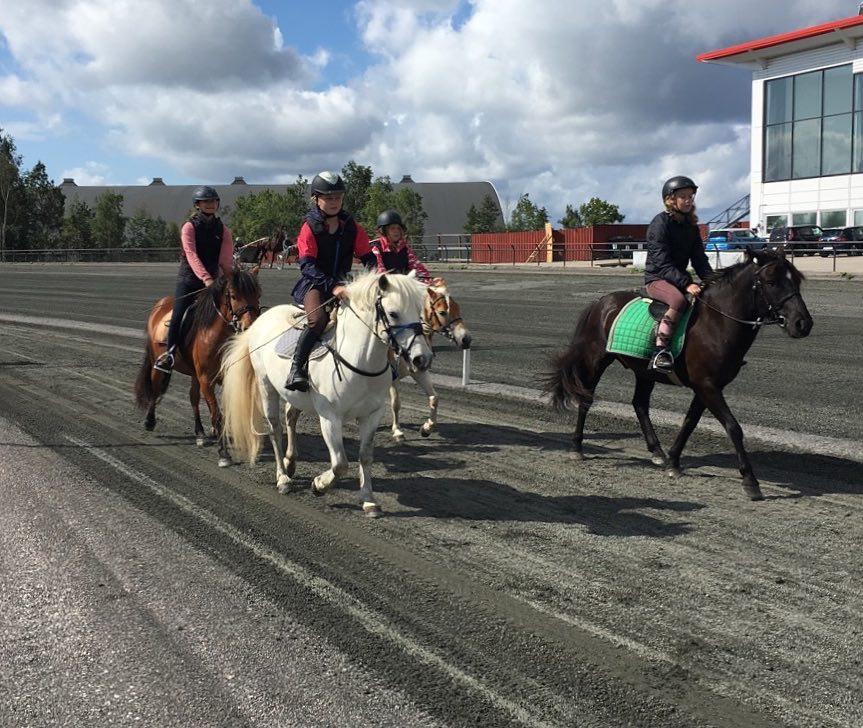 Lørdag 26.januar er det åpen dag på Travskolen. Foto: Travskolen Sørlandets Travpark.