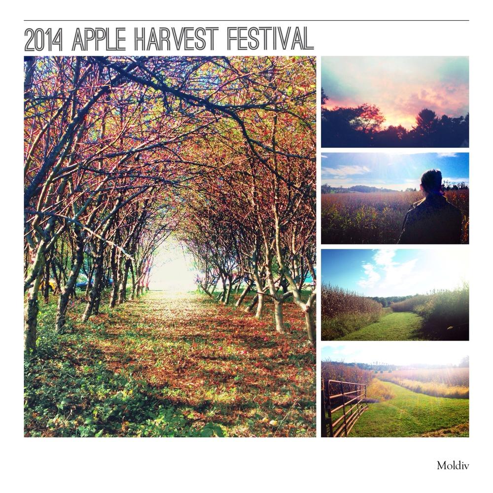 2014 Apple Harvest Festival.jpg