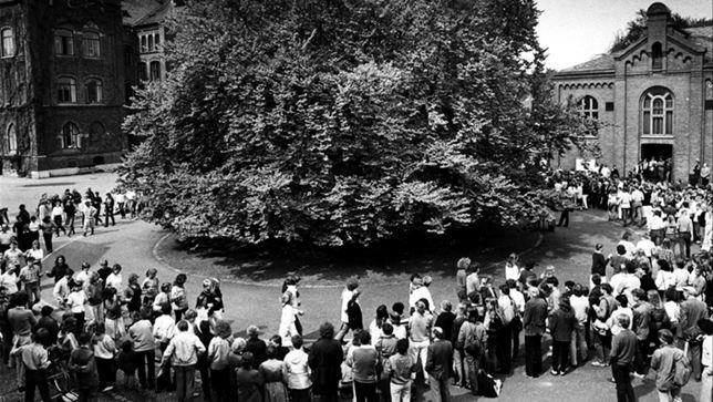Bokdans år 1983
