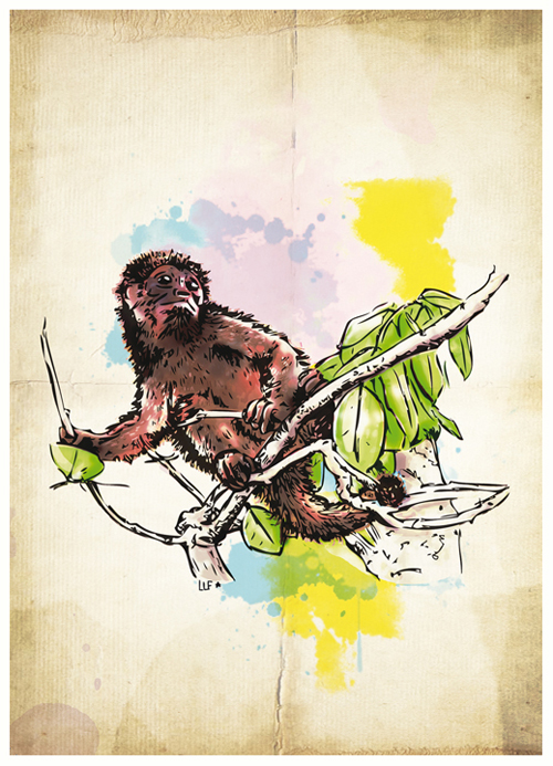 lilylafronde-carte-postale-singe.jpg