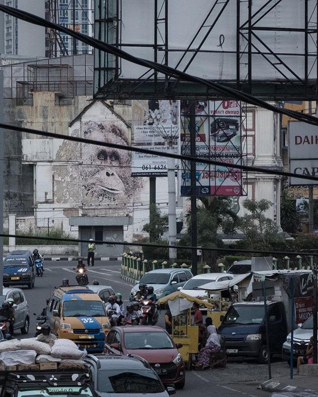 Looking forward to another year of activity with #splashandburn we review the highlights of this year in the stories. Here was one of our shining moments of 2018 with @vhils an intervention to raise awareness of the plight of the #tapanuliorangutan in Medan, Indonesia. More to come for 2019 . @orangutanssos @orangutaninformationcentre @_tickes_ @charlotte_pyatt @ernestzacharevic @newfrontierpictures #vhils #artivism #conflictpalmoil #saveleuserecosystem