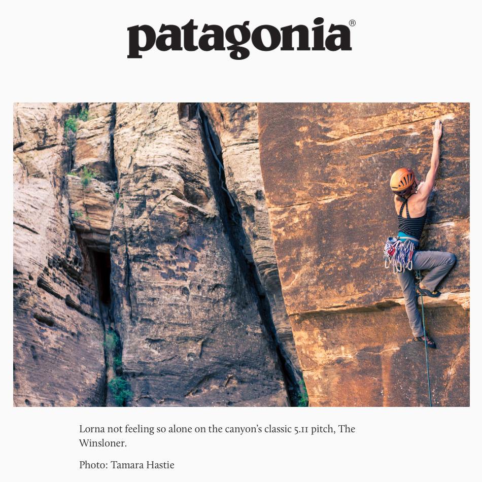 patagoina1.jpg