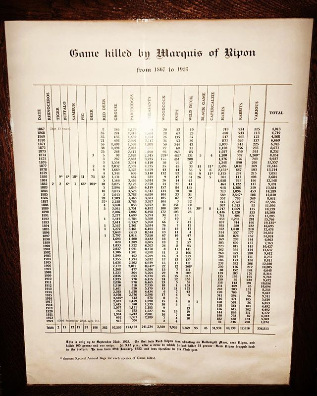 The game book of a man that shot 28 pheasants in 60 seconds. The 2nd Marquis of Ripon GCVO FRS, held the greatest game book ever compiled with a total kill count of 556,813. He died in the heather on Dallowgill moor, having just shot 51 grouse on the last drive. #shooting #grouse #drivenshooting #history #yorkshire #legend #pheasant #partridge #snipe #ripon #season