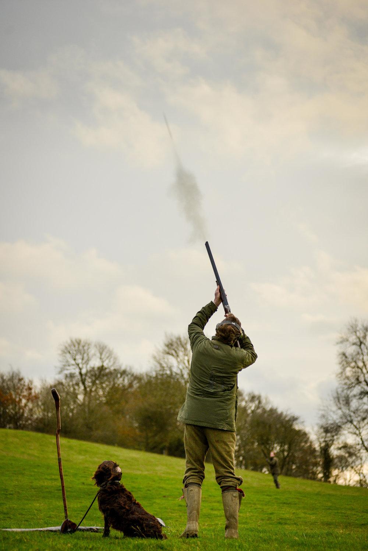 Pheasant Shooting Warwickshire