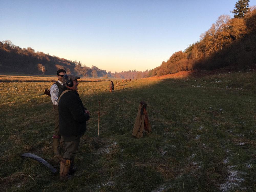 Pheasant Shooting Gregynog