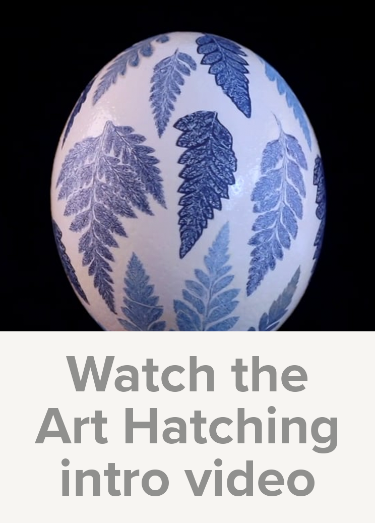 Watch the Art Hatching Across Ohio intro video