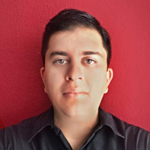 Braulio Méndez Castro<br>Programmer