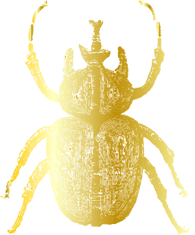 Handley Breaux Designs | India Hicks | Golden Beetle