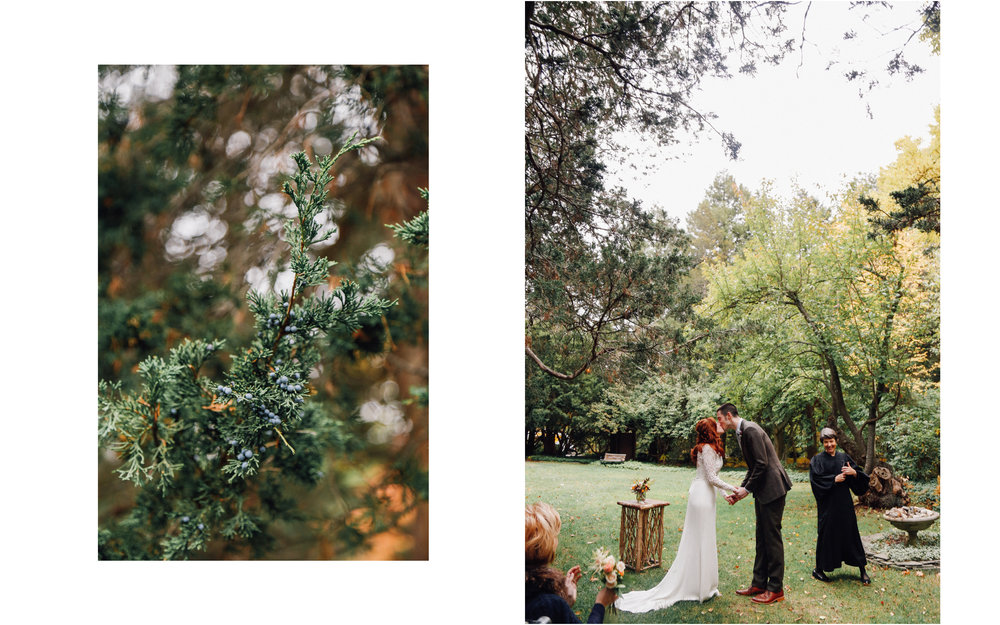 Mass Audubon_Wedding Photographer_Meg Haley Photographs_032.jpg