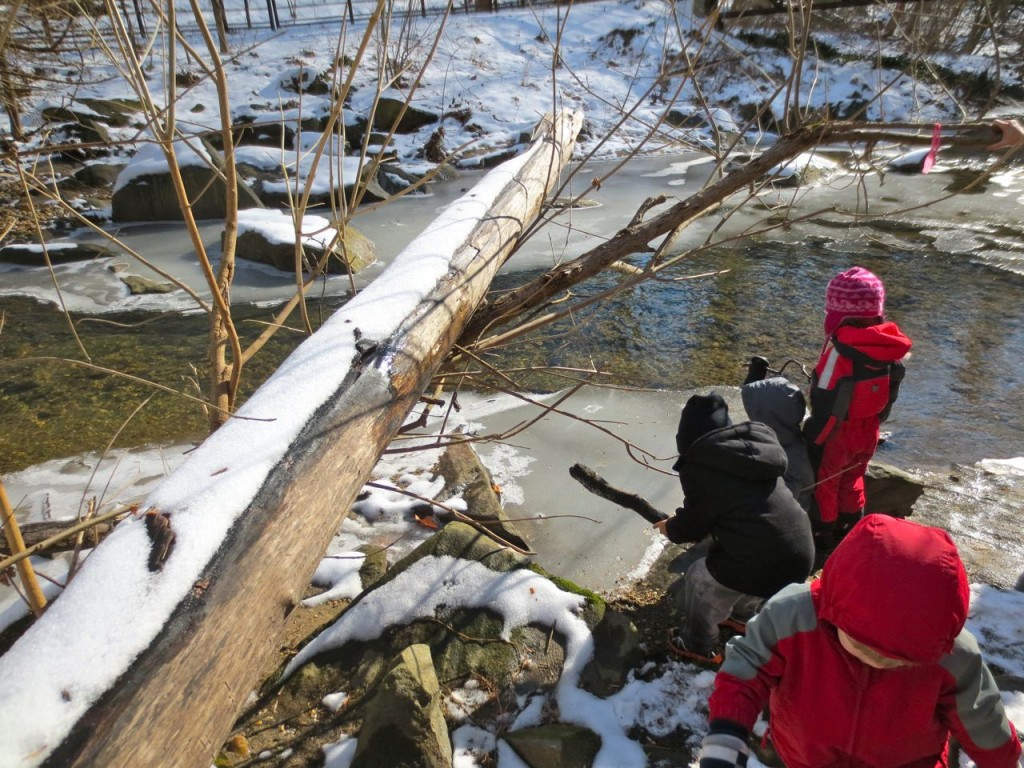 The ice was tested with sticks and stones. A fallen tree has become a stand-in for the first fallen tree we found.