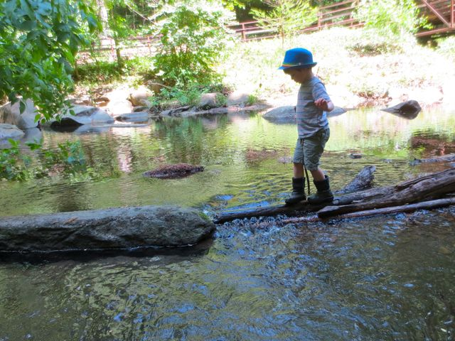 Using a stick to help balance across the log/branch bridge. Win!