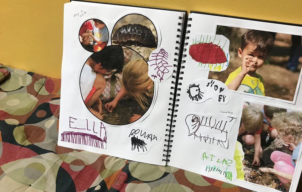 "This is the section of our Project Book, ""Outside at School"" that explores this pillbug exploration. The children-authors have been collecting interesting bits and pieces of their explorations outside. This question about the pillbug is a perfect addition. We can add and revisit the question and what we find out about the subject over time."