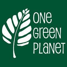 onegreenplanet.org