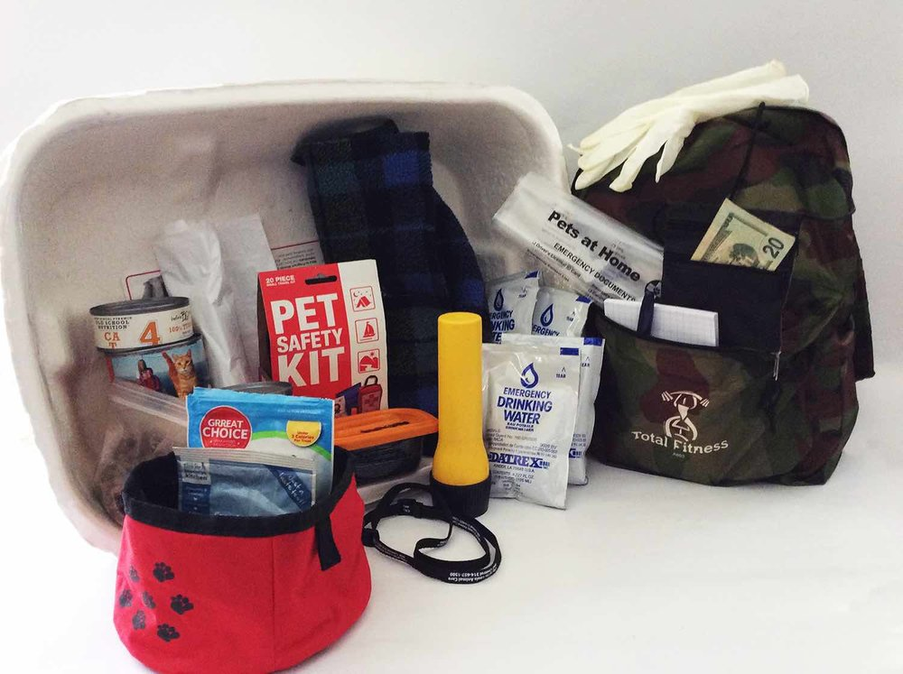 Pets At Home Cat Go Bag
