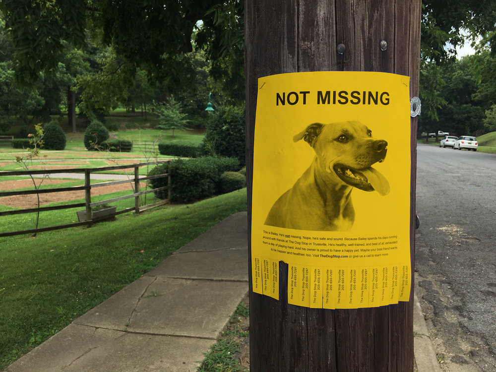 Guerrilla Marketing Happy, well-adjusted dogs are less likely to wander off, so we posted flyers of a  not missing  dog on telephone poles and message boards around town, with tear-away phone numbers of the nearest Dog Stop location.