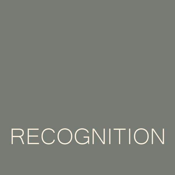 RECOGNITION ICON.jpg