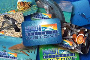 basic schedule underwater world rh diveunderwaterworld com naui scuba rescue diver textbook naui scuba diver instructor guide