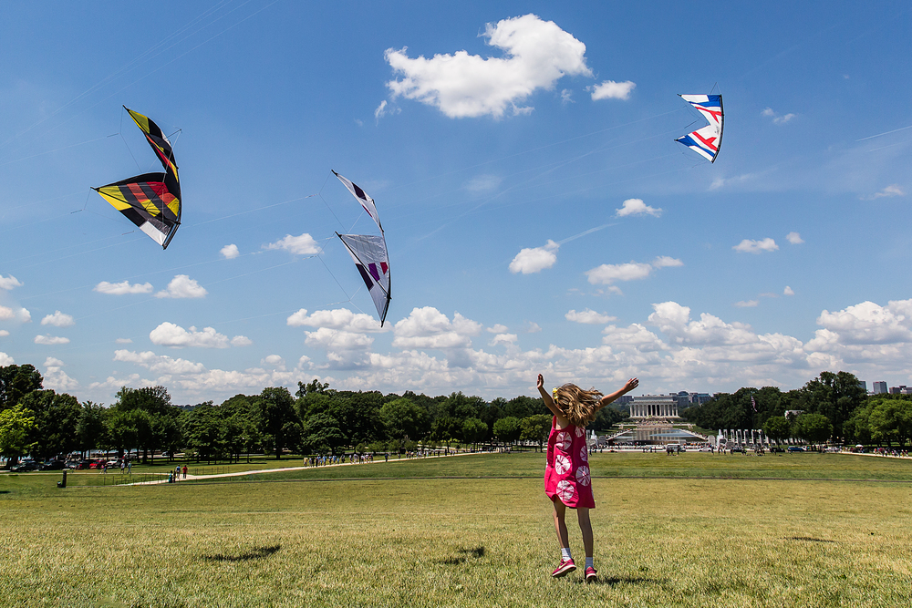 National Mall Kites-1