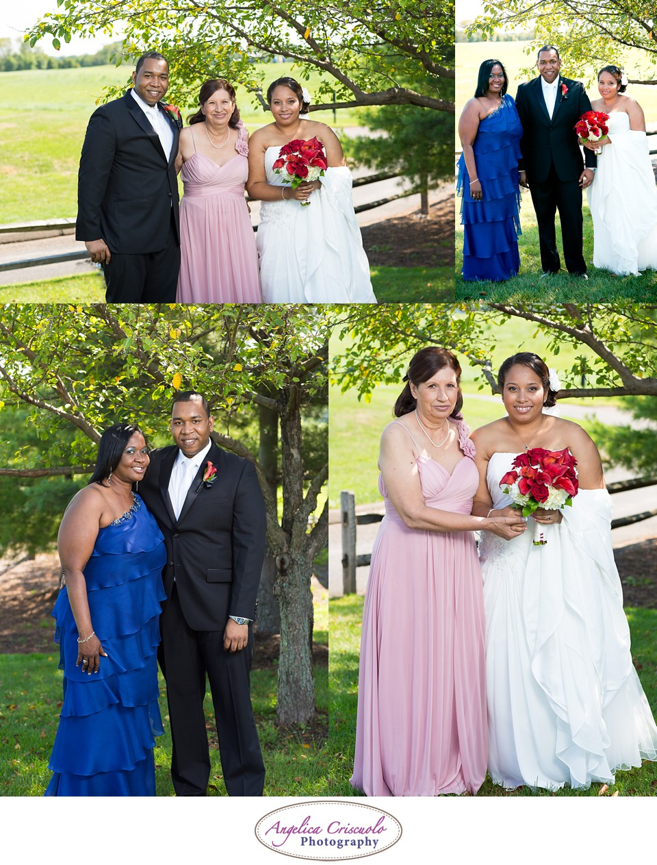 Staten Island Photography Portrait Wedding Ideas VJCoddWedding8.12.12-237