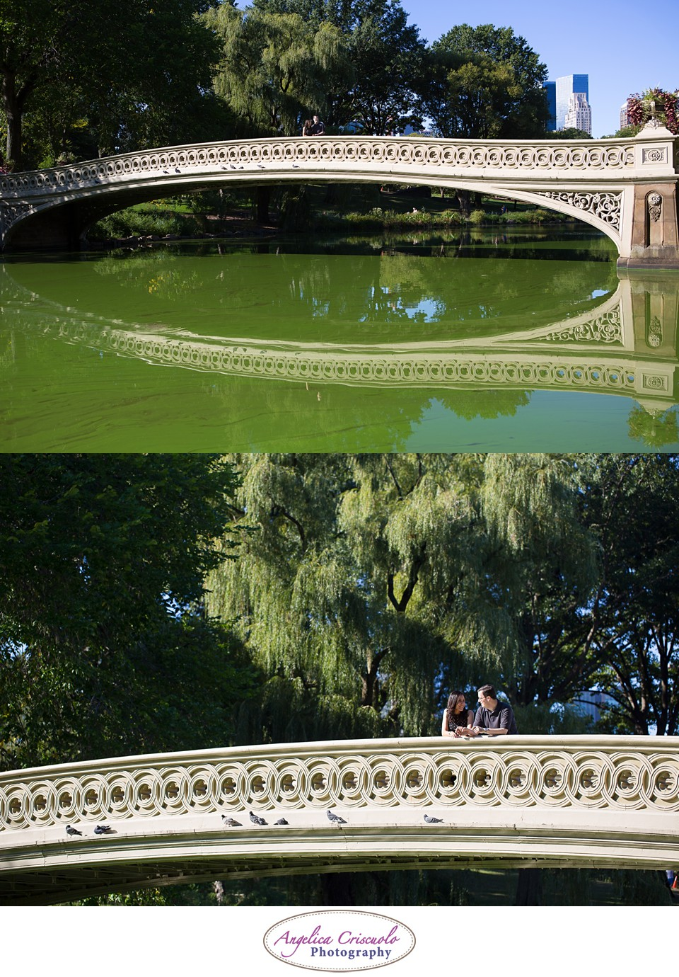 NYC Engagement Photography Central Park Bow Bridge Jennifer & Brandon 001