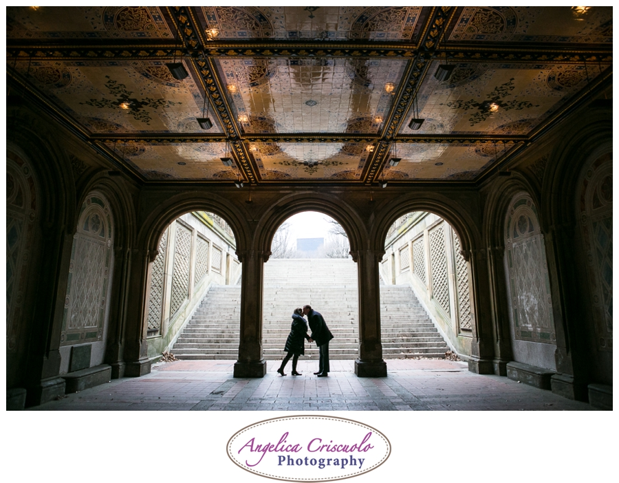 Bethesda Fountain in NYC's Central Park Silhouette Image