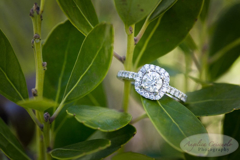 NYC_Wedding_Engagement_Photos_DUMBOBrooklyn_AllisonSeanWEB-127.jpg