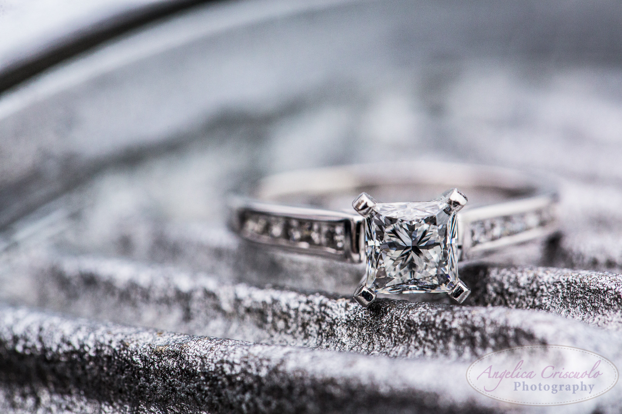 2014.02.15CourtneyGlosserLisaPazminoProposal-WEB-108