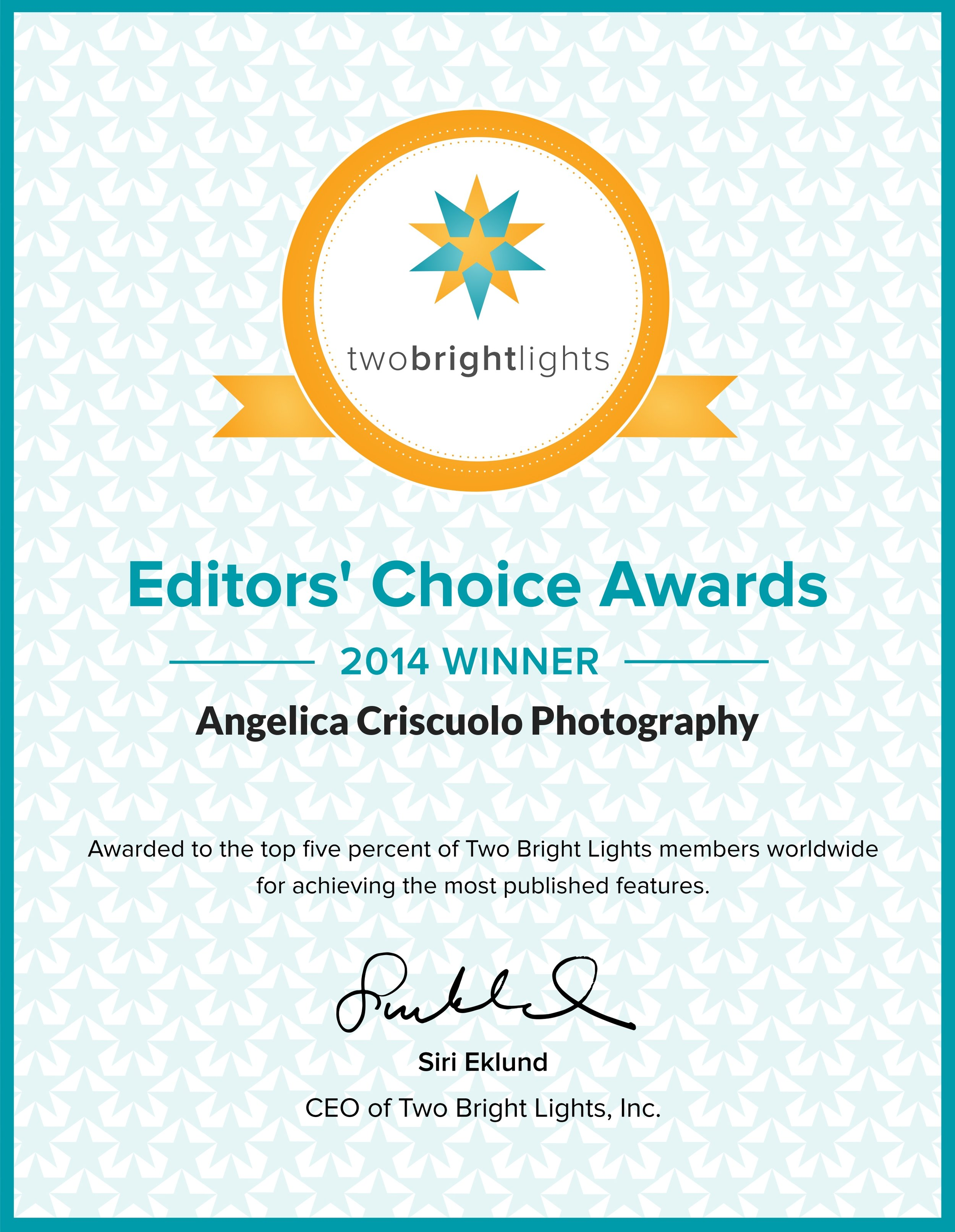 New York Wedding Photographer Award winning Photography Two Bright Lights Editor's Choice Awards