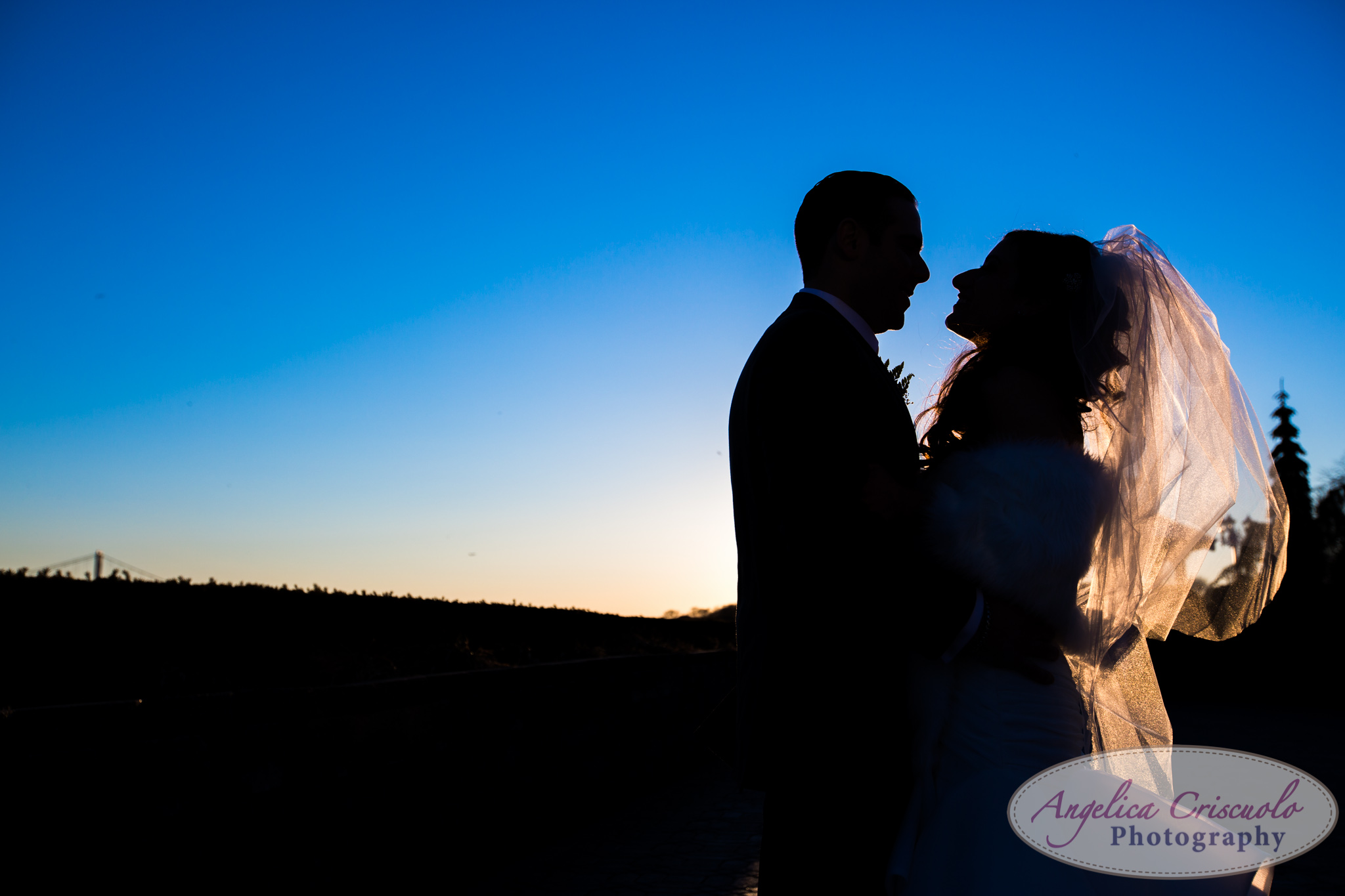 New York Wedding Photographer Sunset Bride and groom photos silhouette