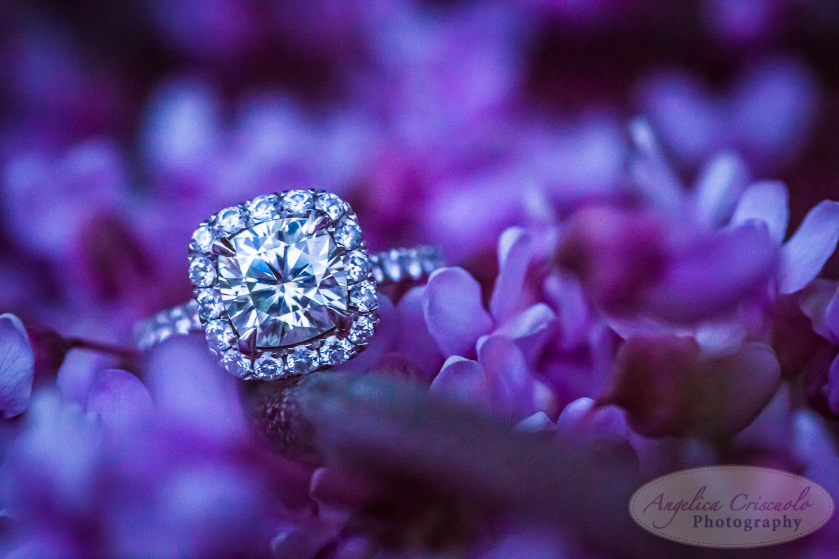 New York Engagement Photography Cushing cut ring