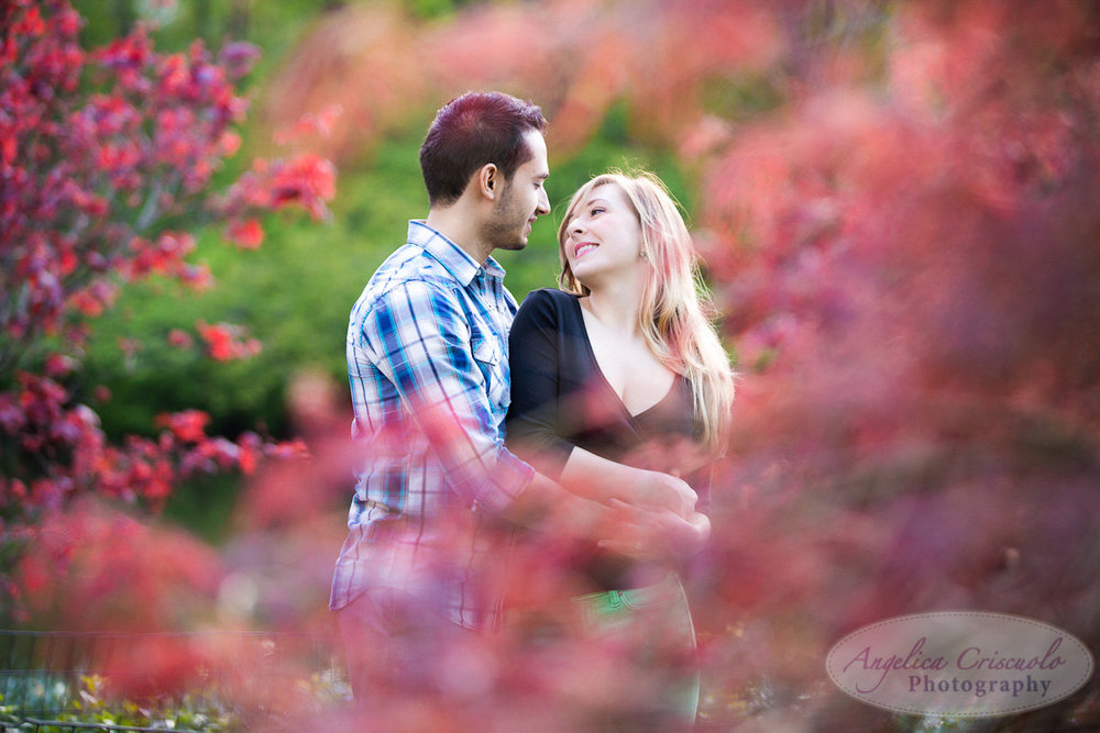 View More: http://angelicacriscuolophotography.pass.us/amberjonathan