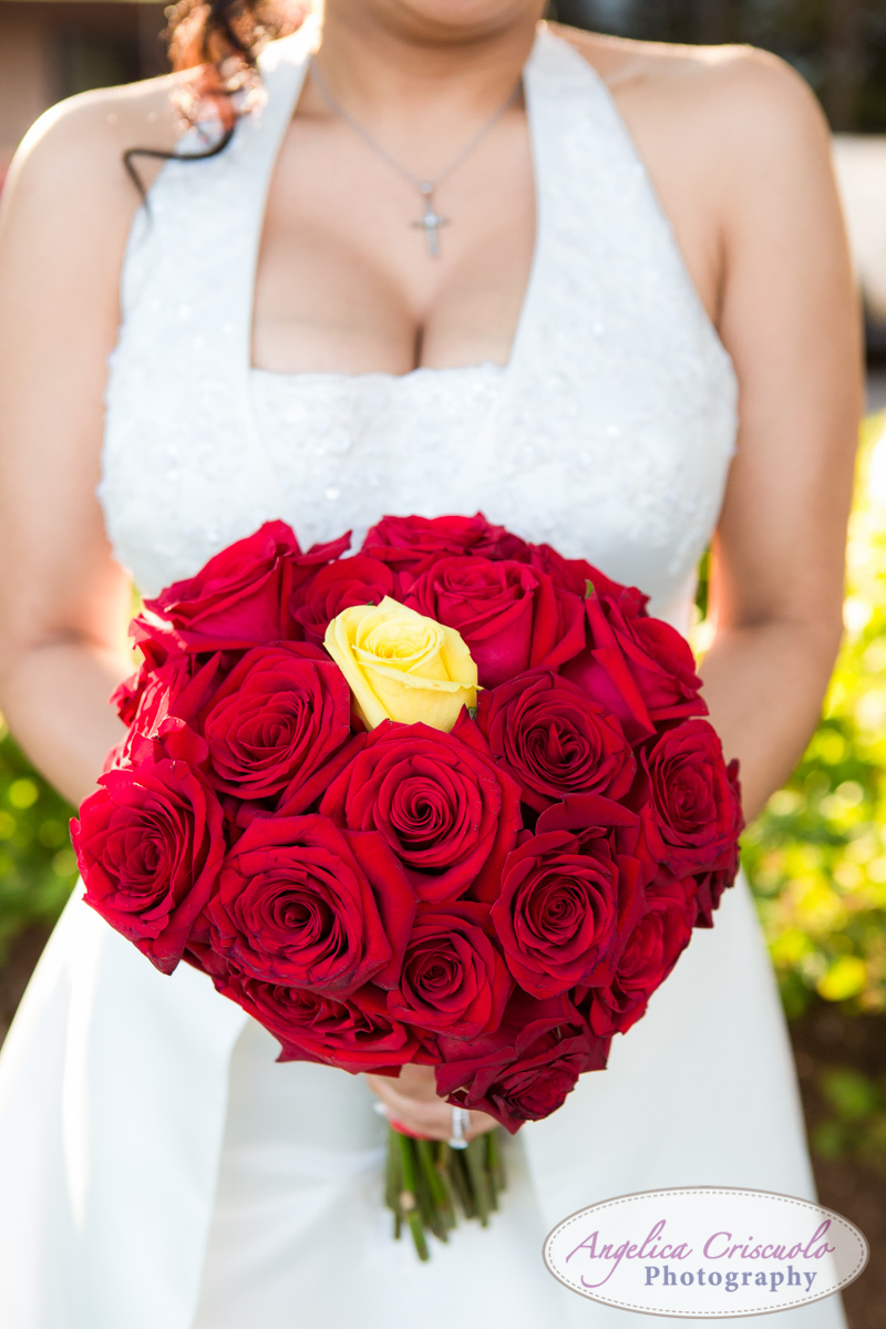 Queens_New_York_Wedding_Photography_Dalas_Texas_Unisphere_Web-767.jpg