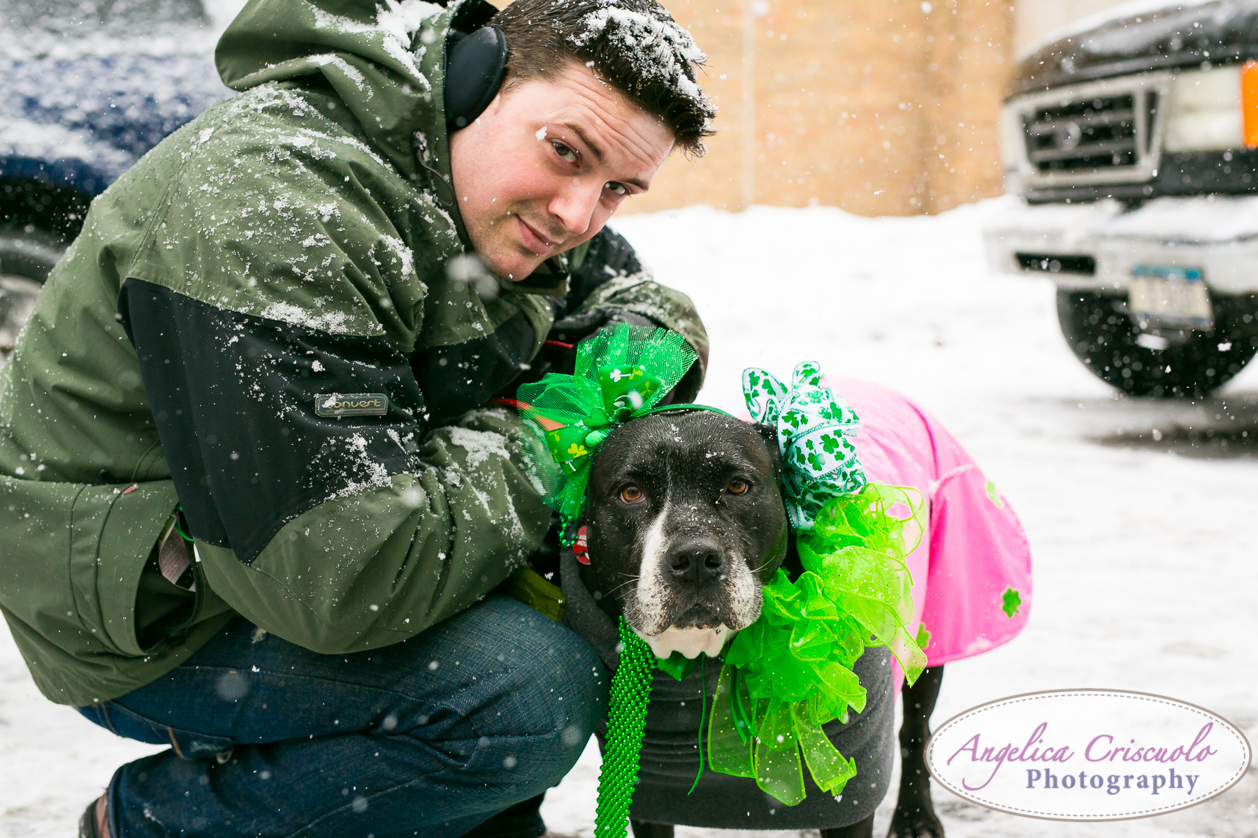 St.Patricks Day Parade Pitbull Mix Rescue Sean Casey Wes Paw Charlotte LIC Queens Matthew Criscuolo