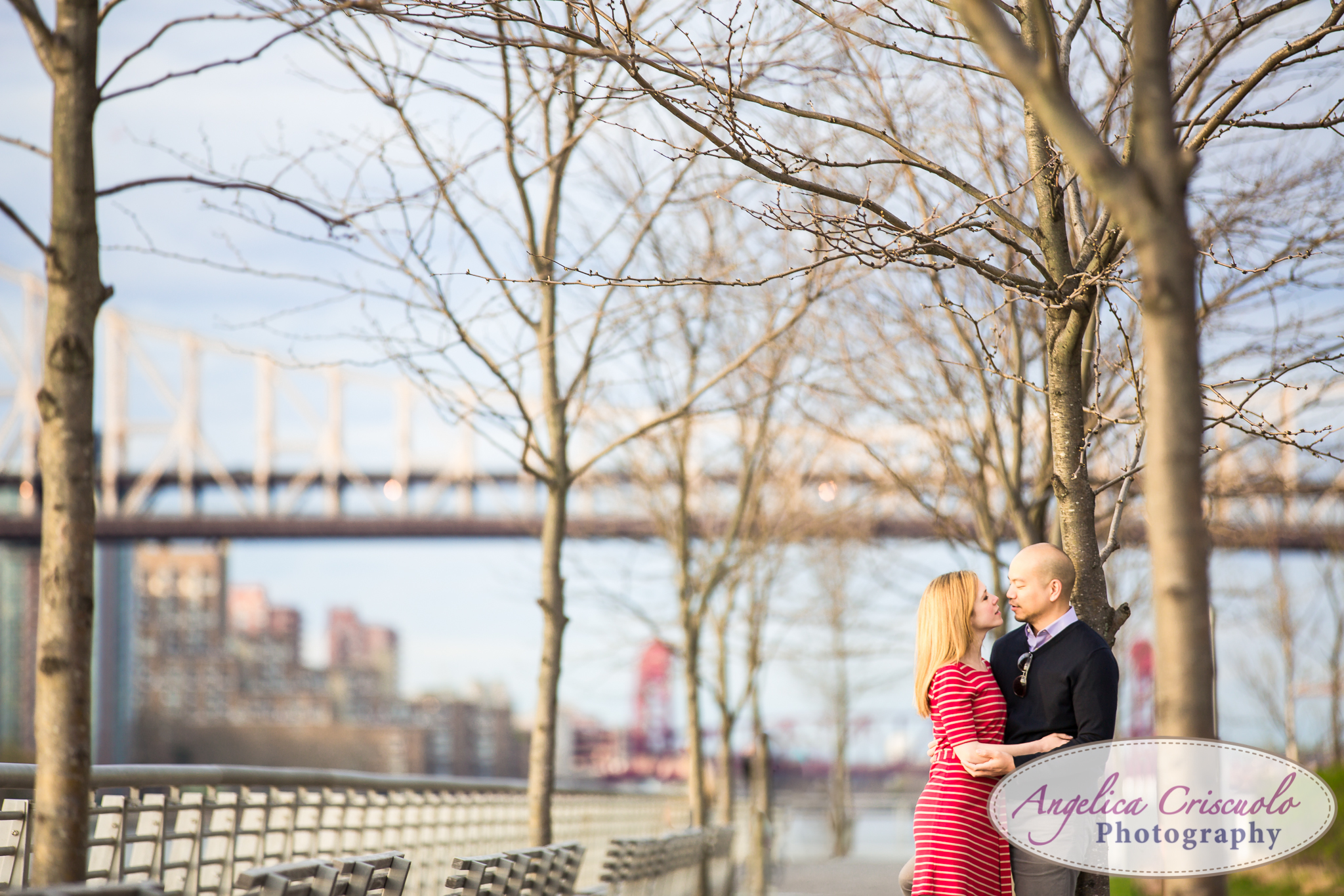 Queens Long Island City New York Engagement Photos in Gantry State Park East River Walk