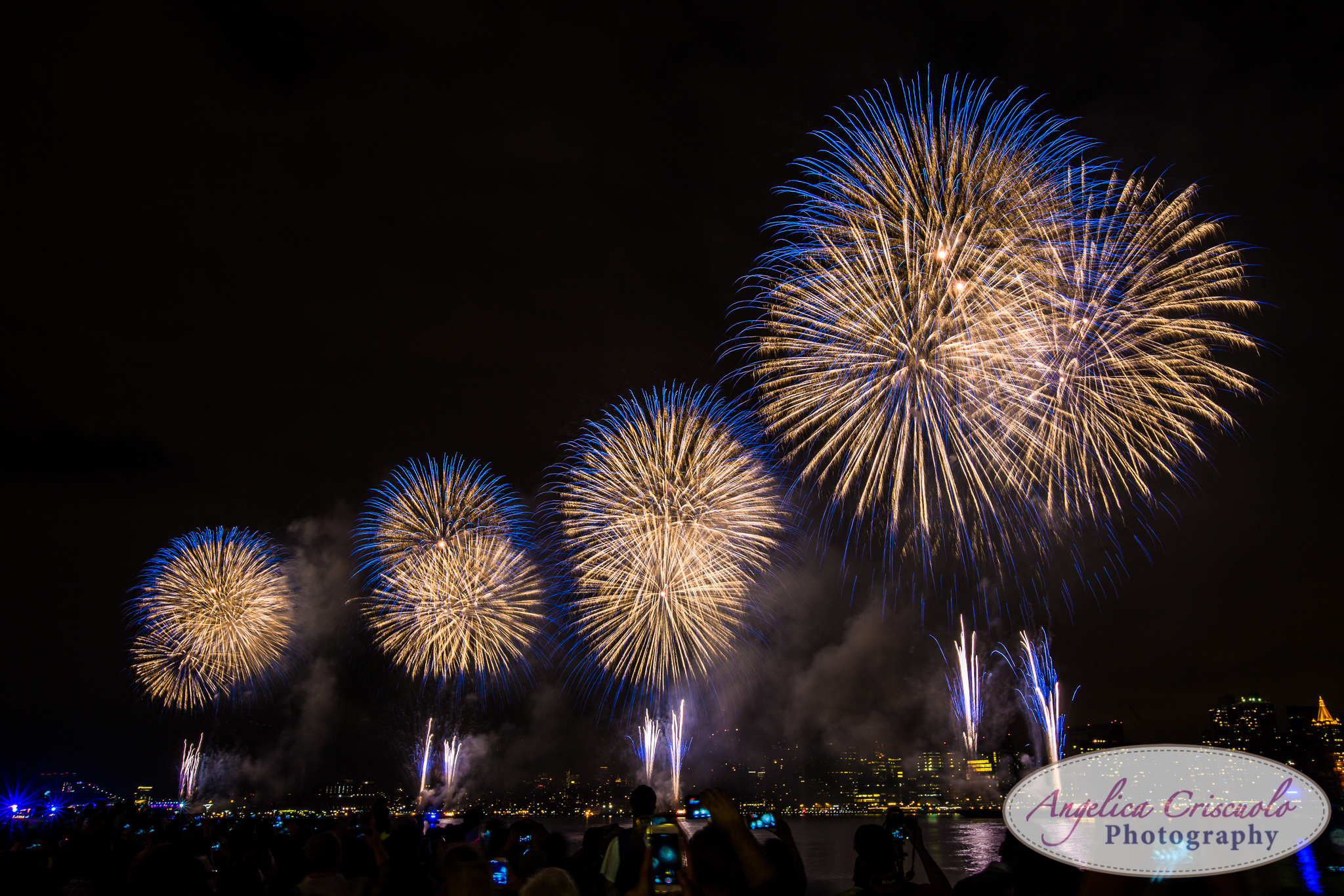 Best Wedding Photographer Fireworks