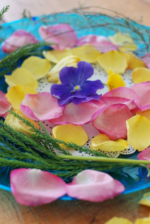 blooming journals