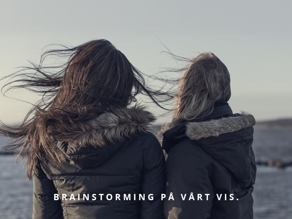 brainstorming i Bohuslän