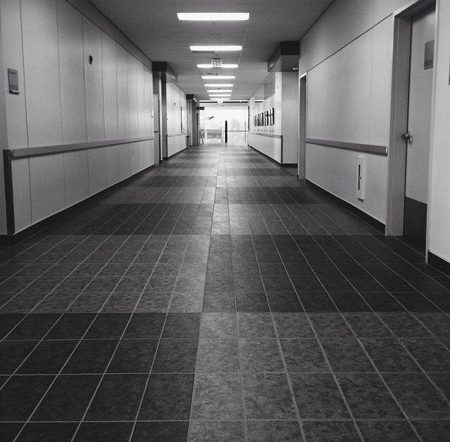 The Hallway – 41 Likes