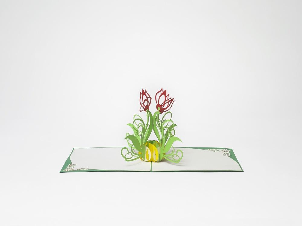 Blumen.jpeg